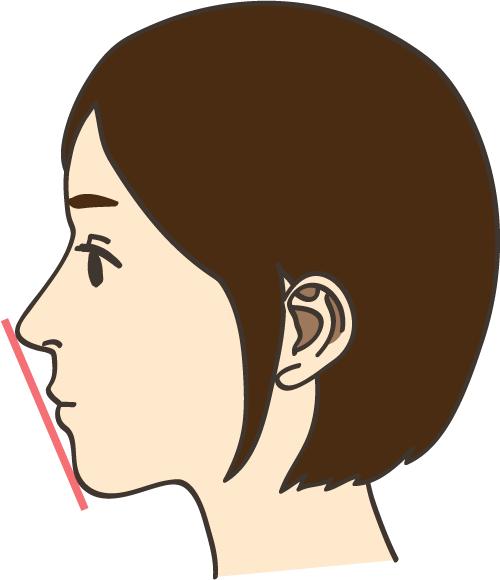 横顔 Eライン イラスト